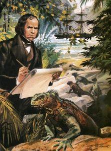 darwin evoluzione pollice opponibile