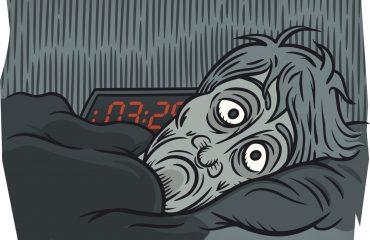 neonato-notte-sonno