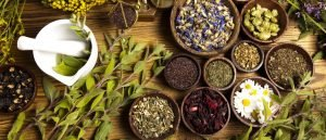 fitoterapia naturopatia